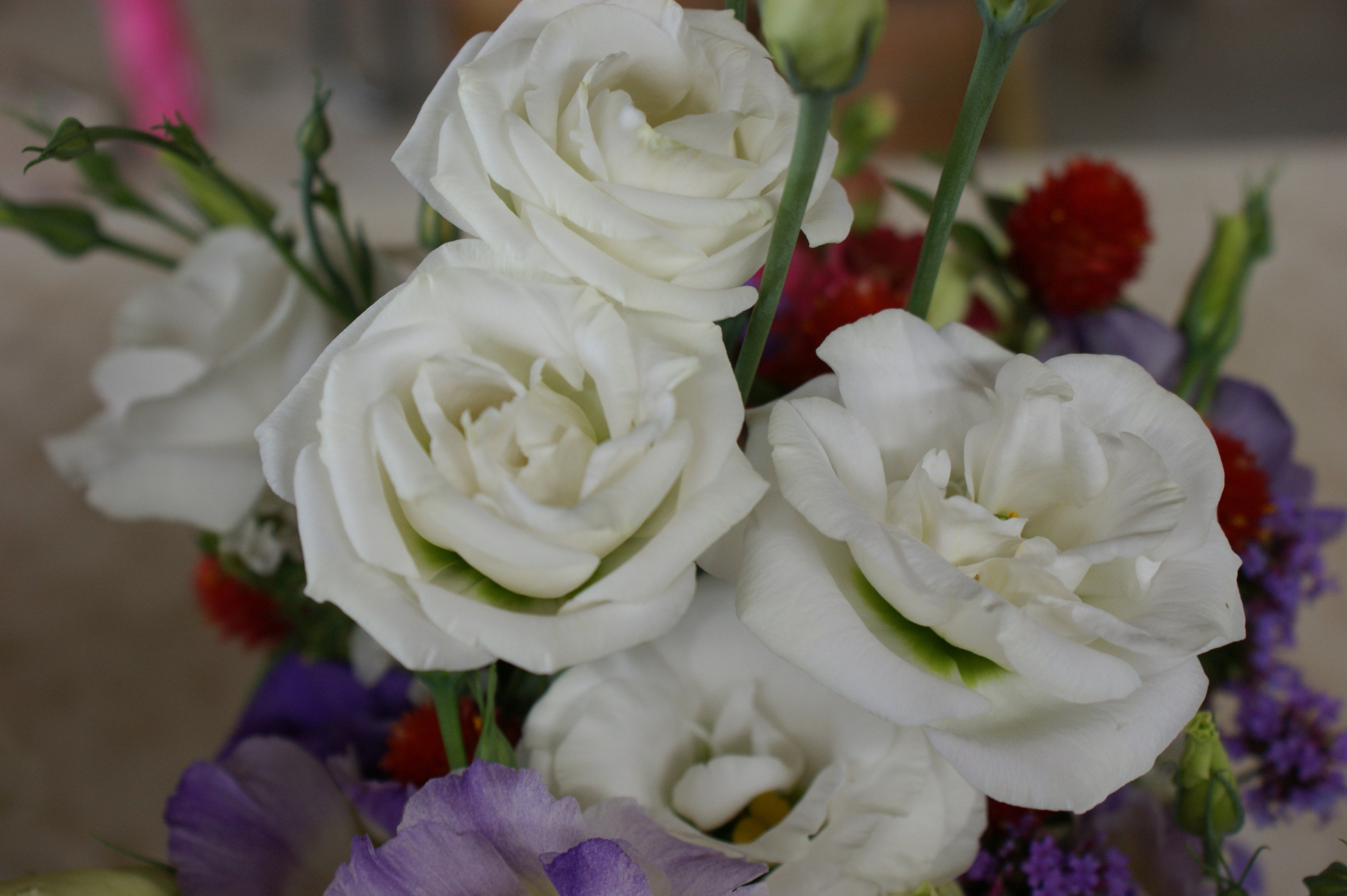 White lisianthus in bouquet