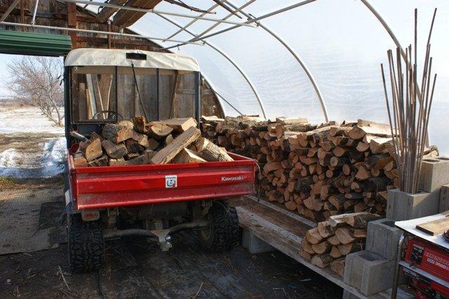 Winter wood gathering