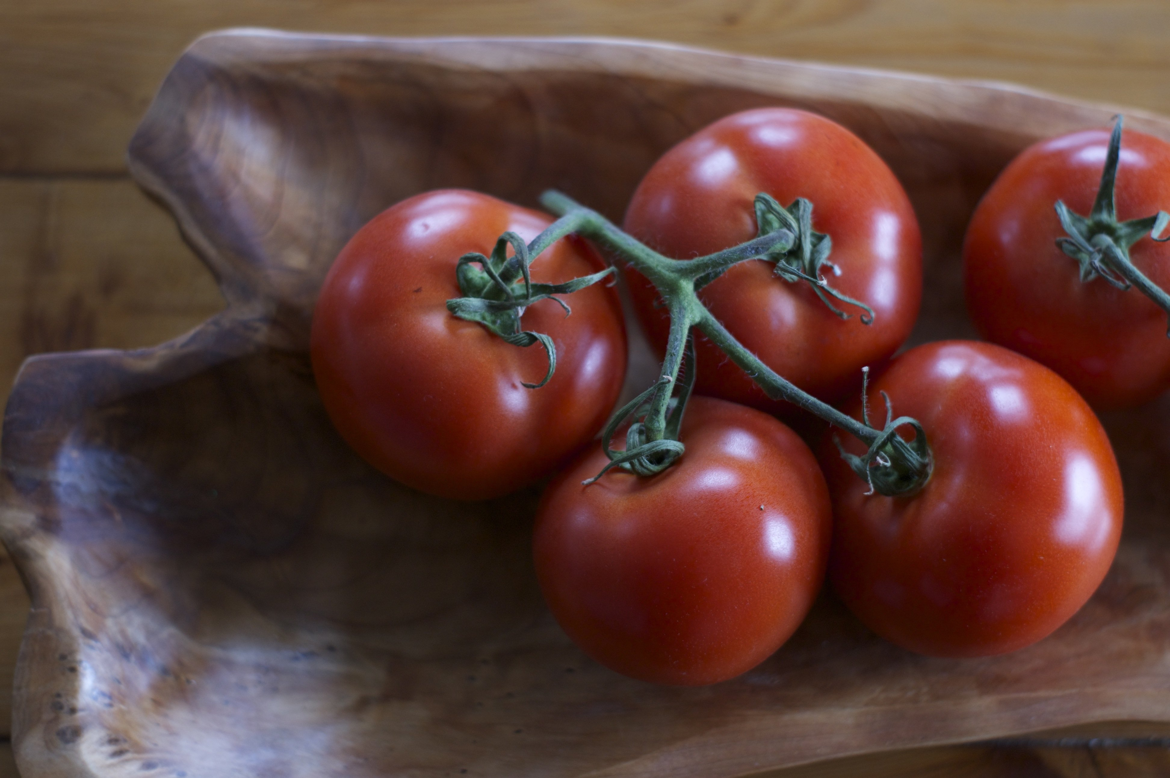 tomatoes in a bowl#1