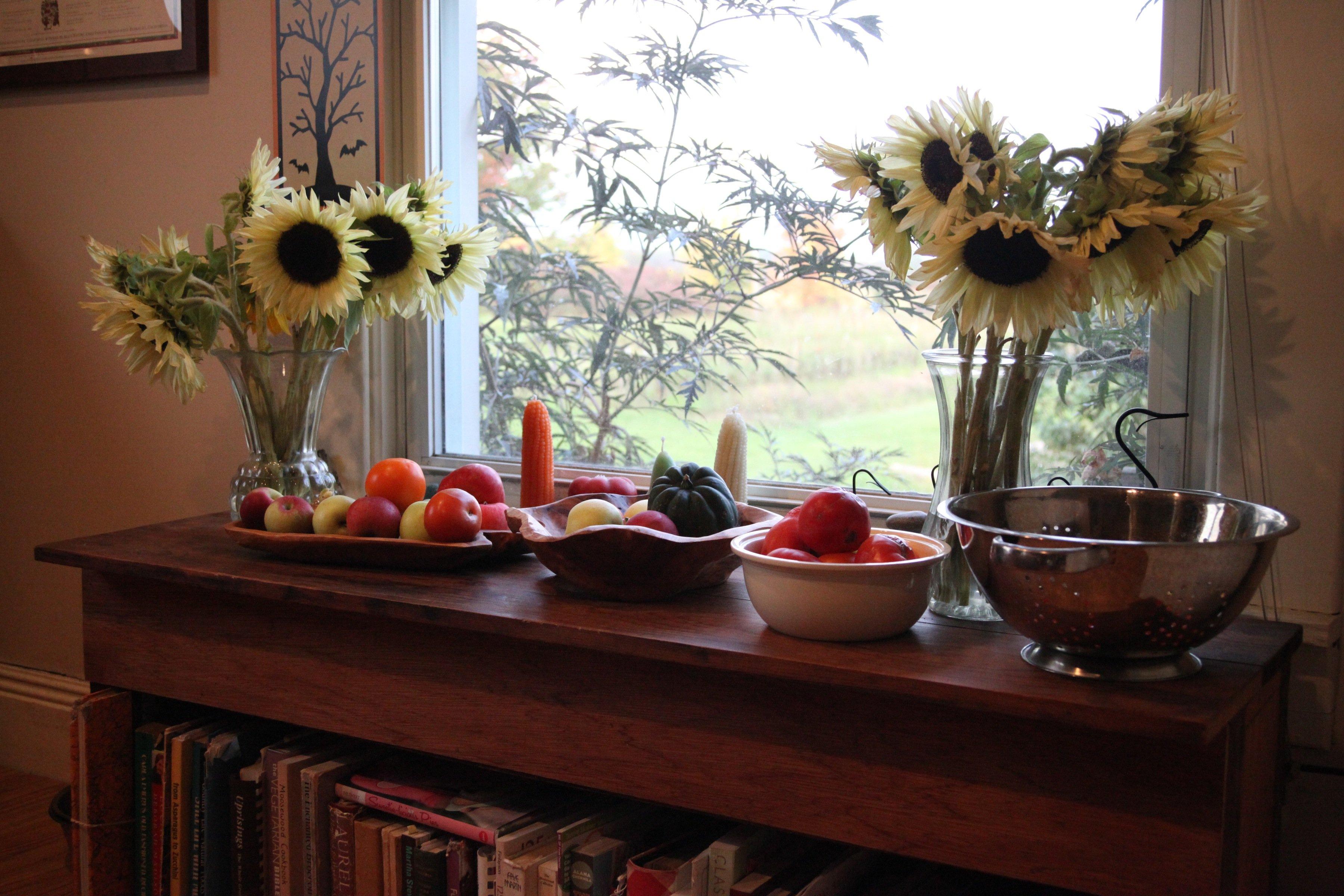 sunnies in kitchen