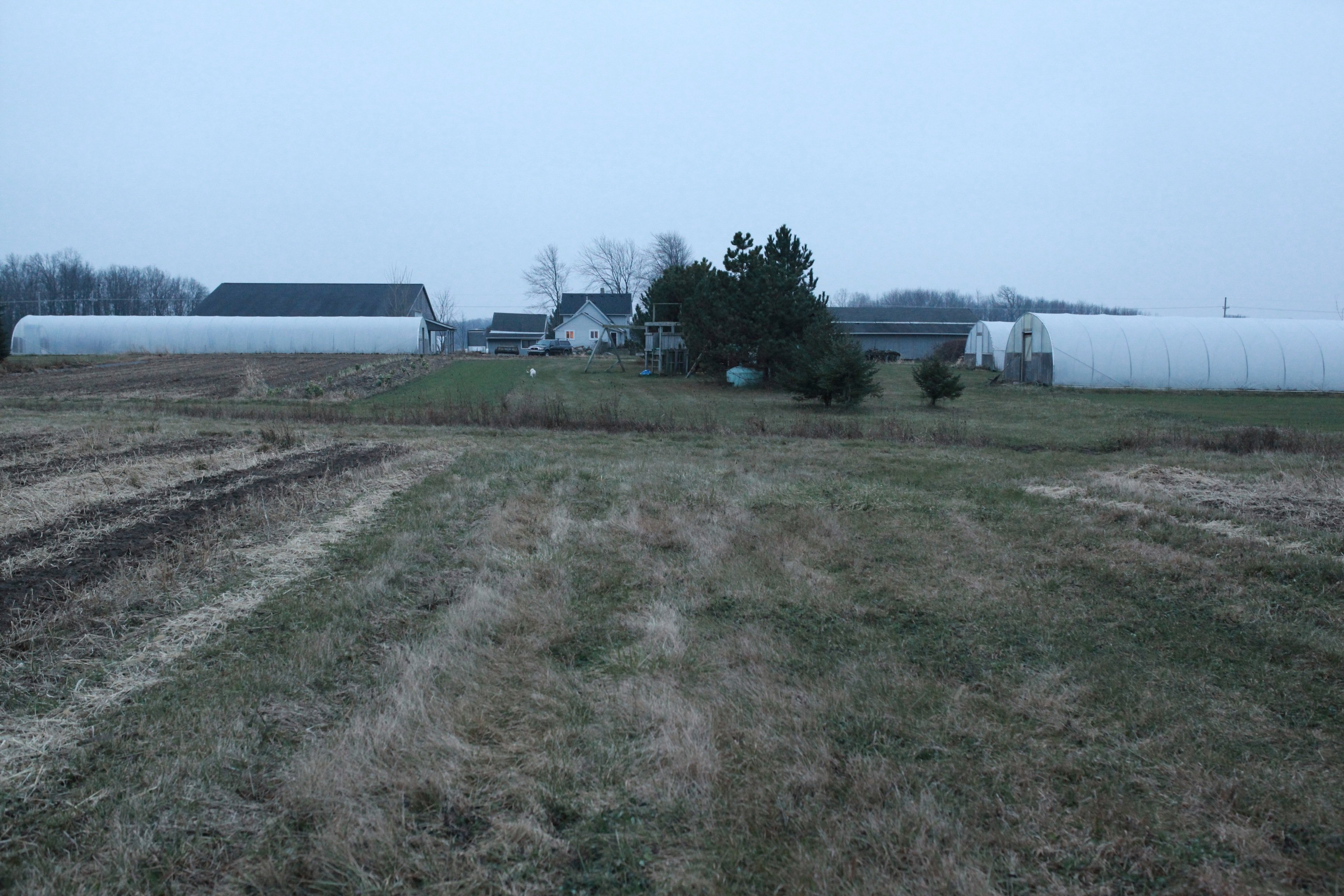 farm from back forty in Nov