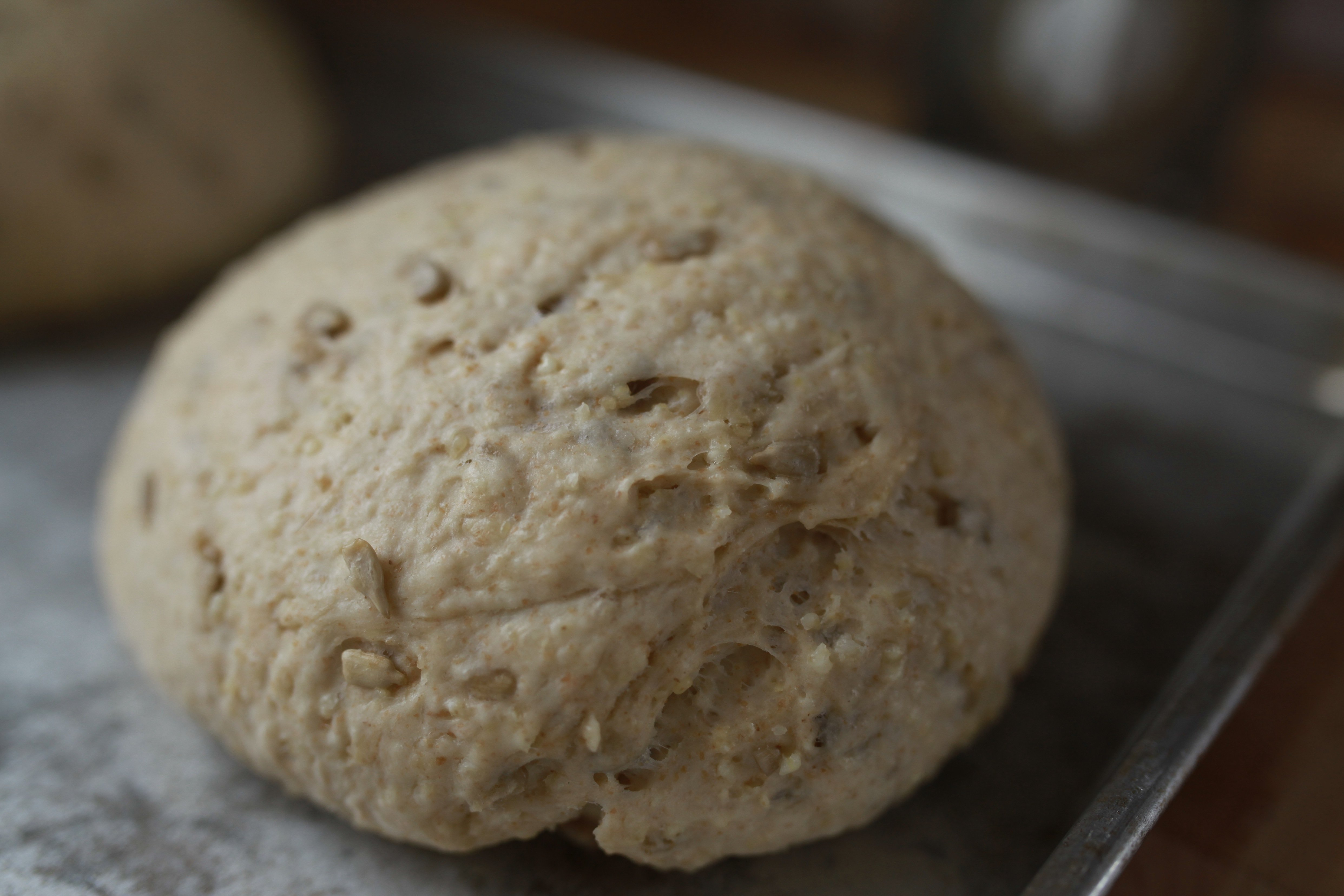 unbaked millet bread close
