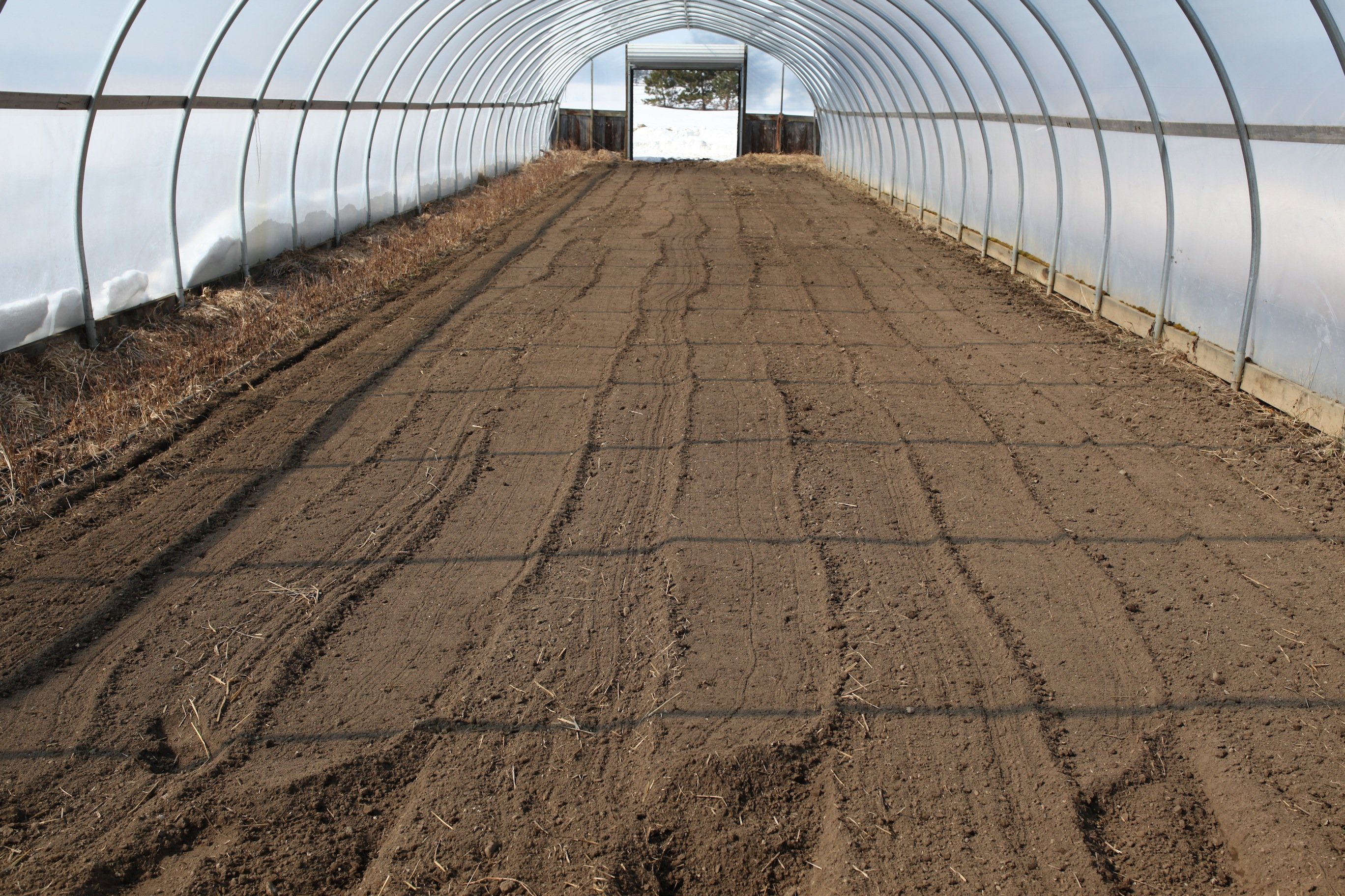 greenhouse ready in march