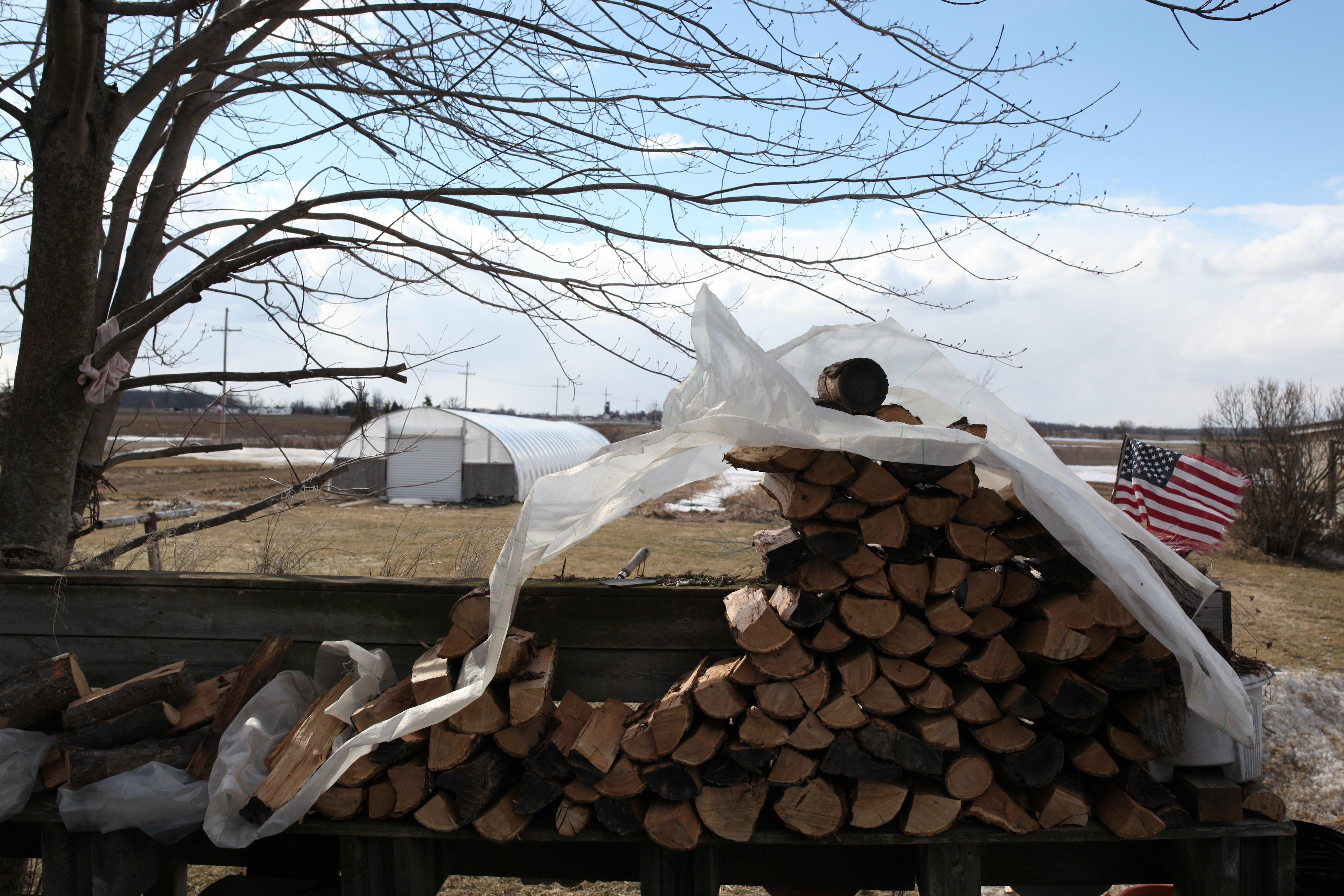 wood pile in spring