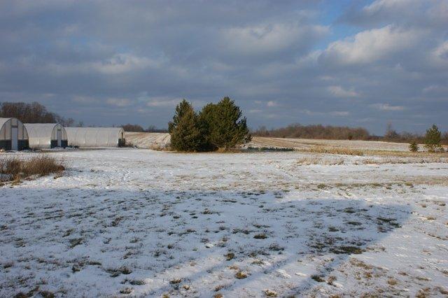 Winter on the farm 2013