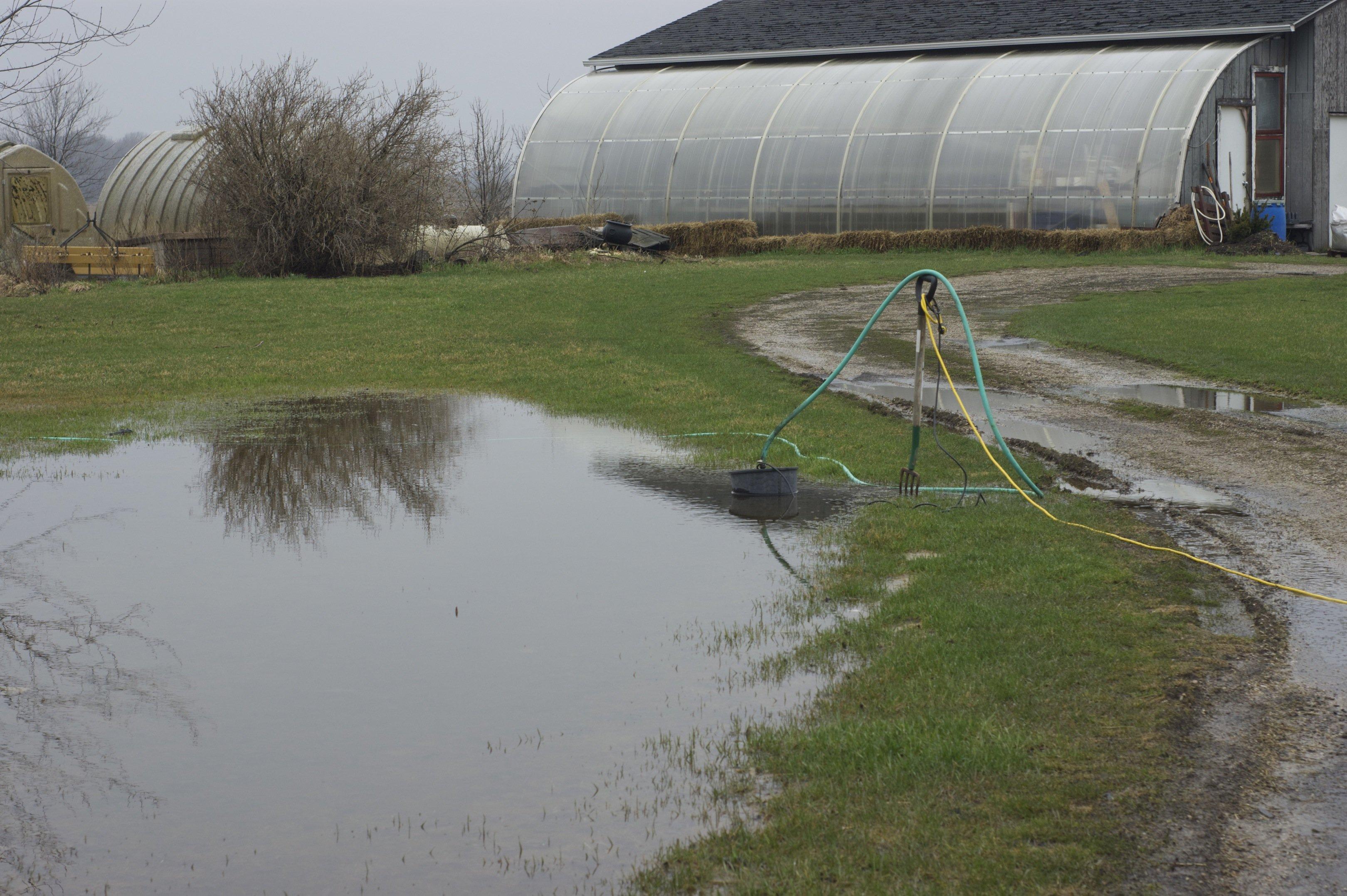 water by nursery greenhse