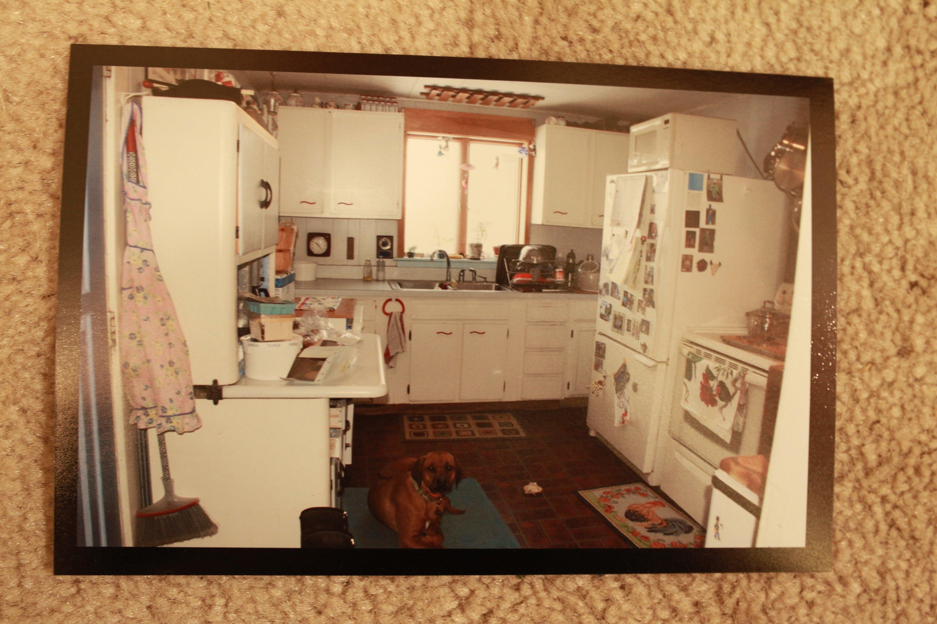 old kitchen w: dog