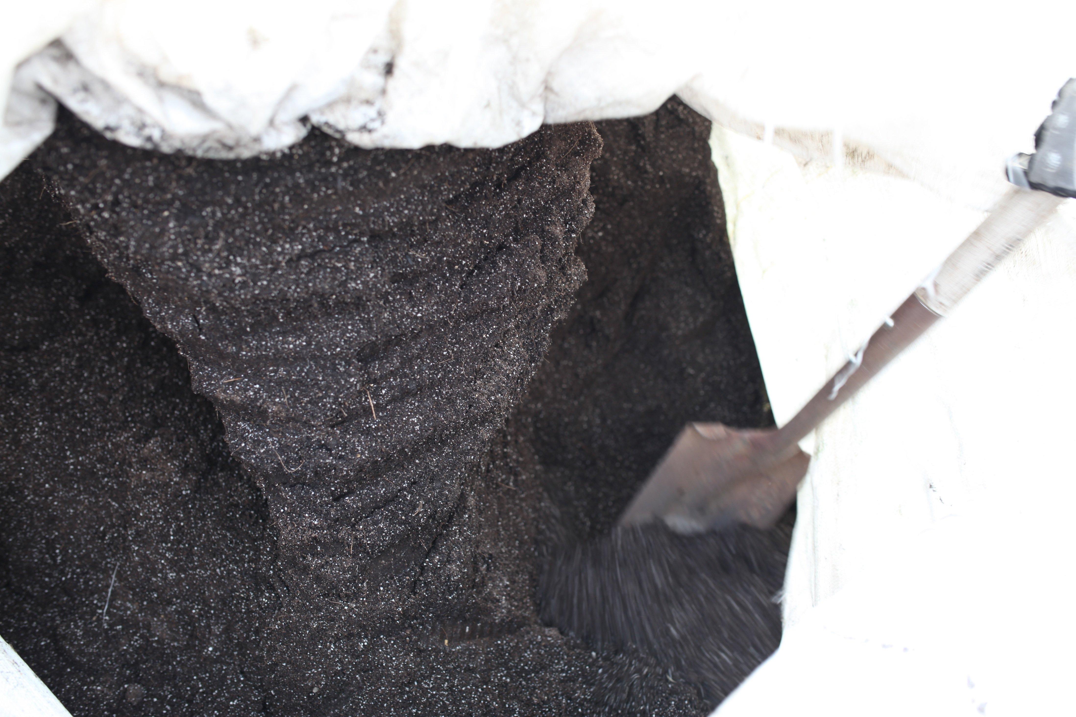 frozen seed starter