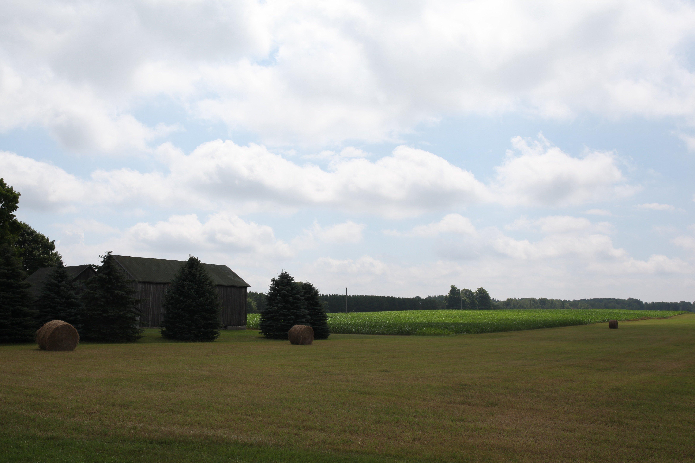 a field somewhere in N michigan
