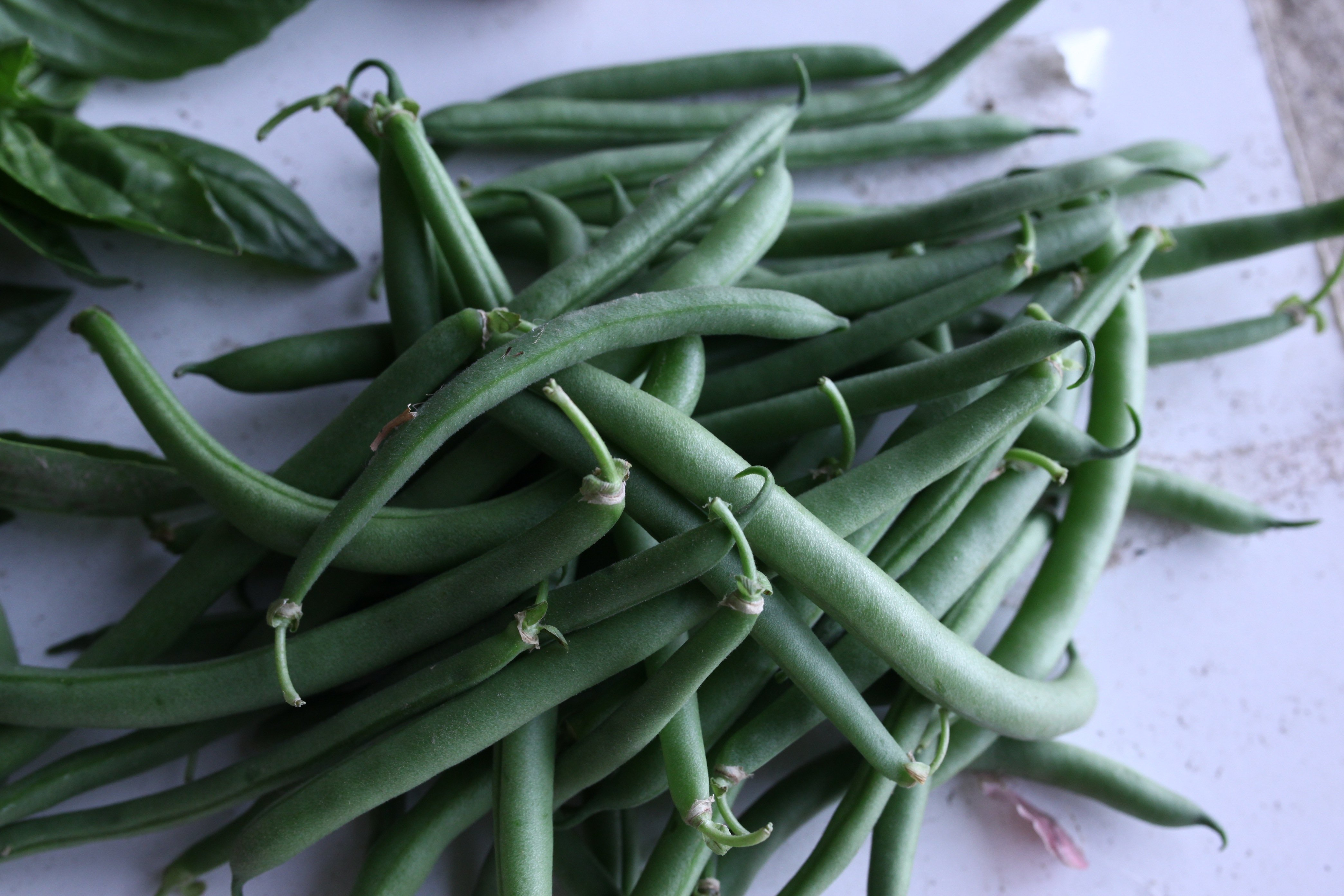 a little pile of green beans