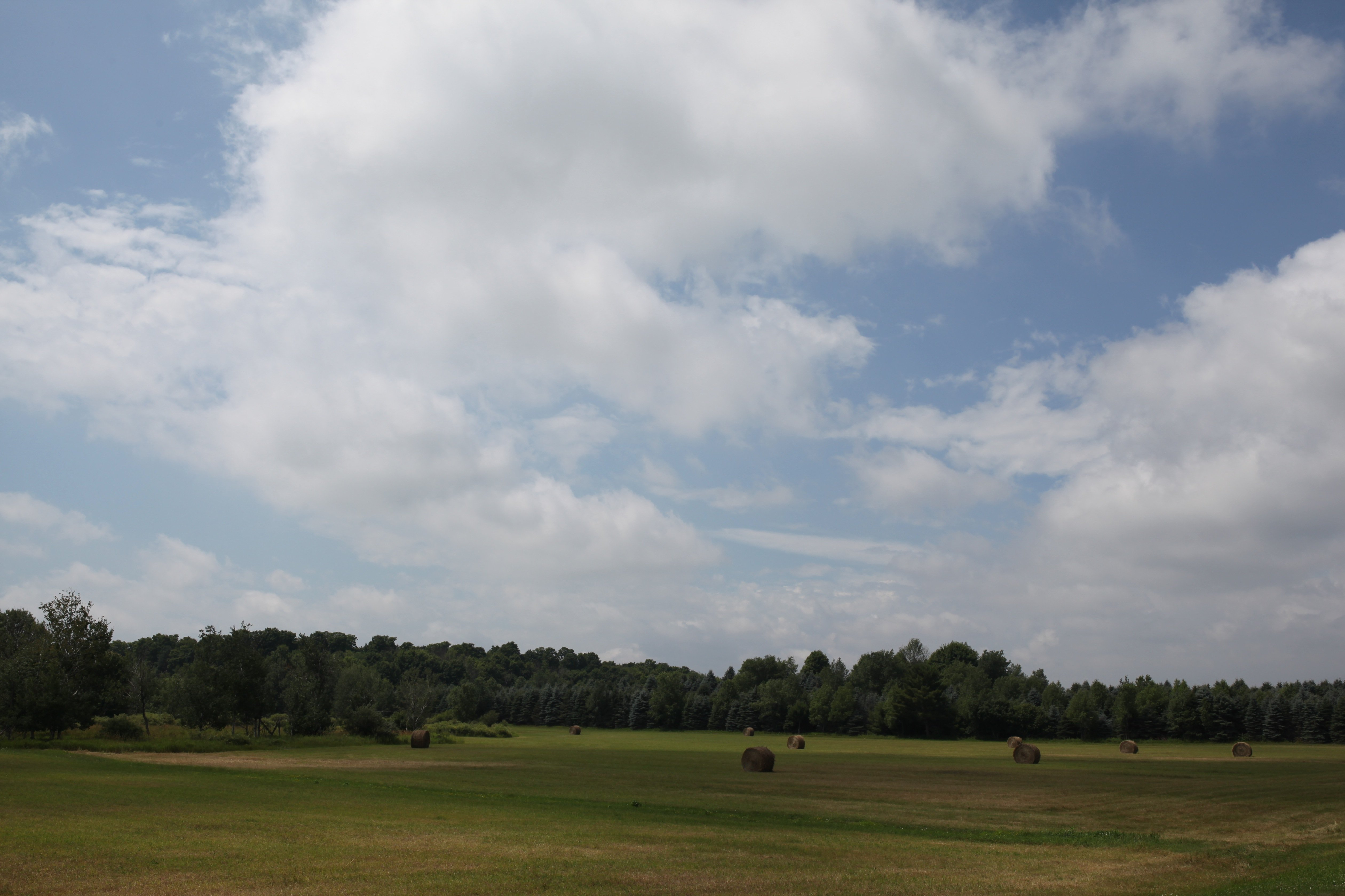 round bale field in N Mich