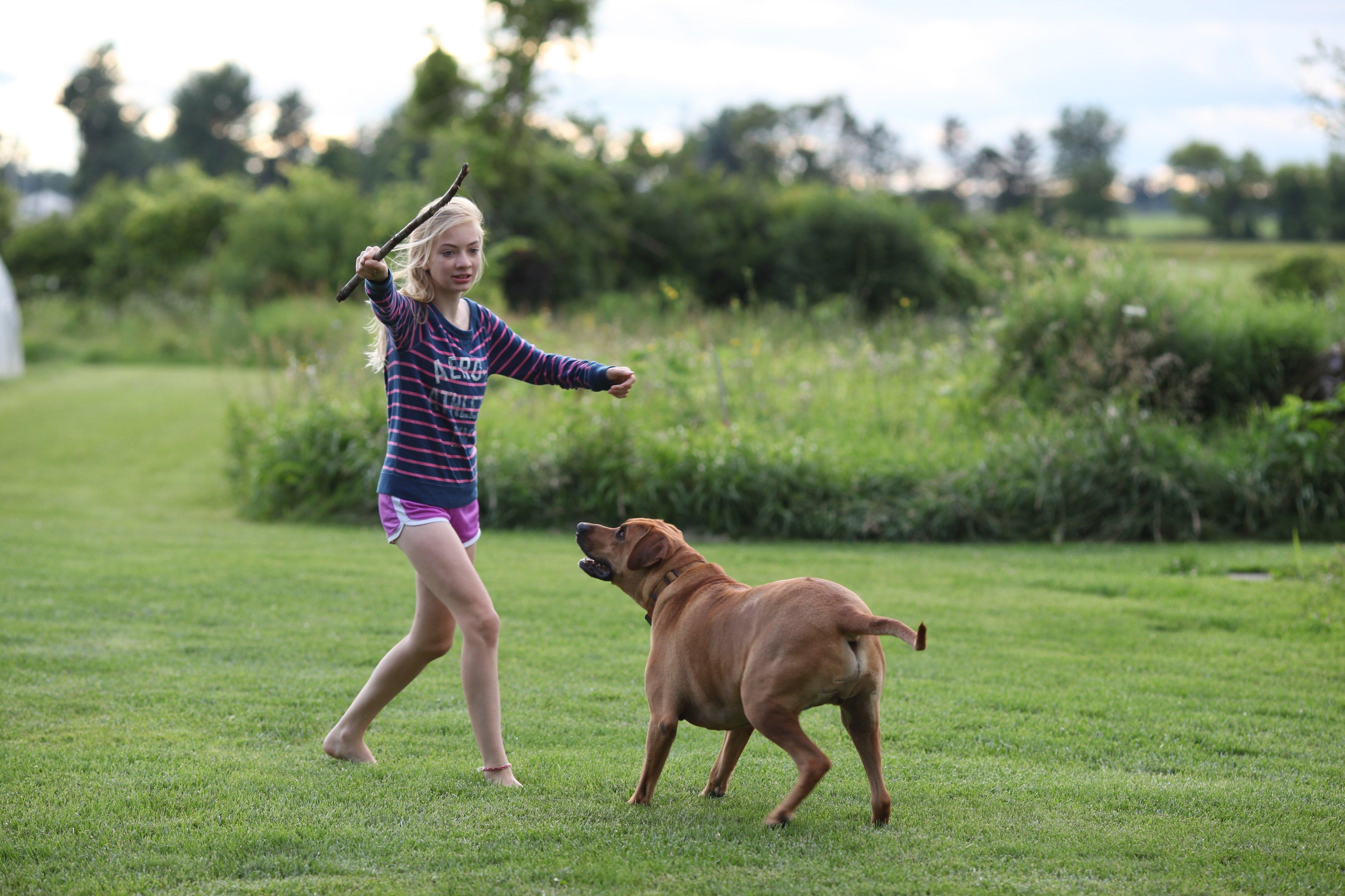 the magic flying dog #2