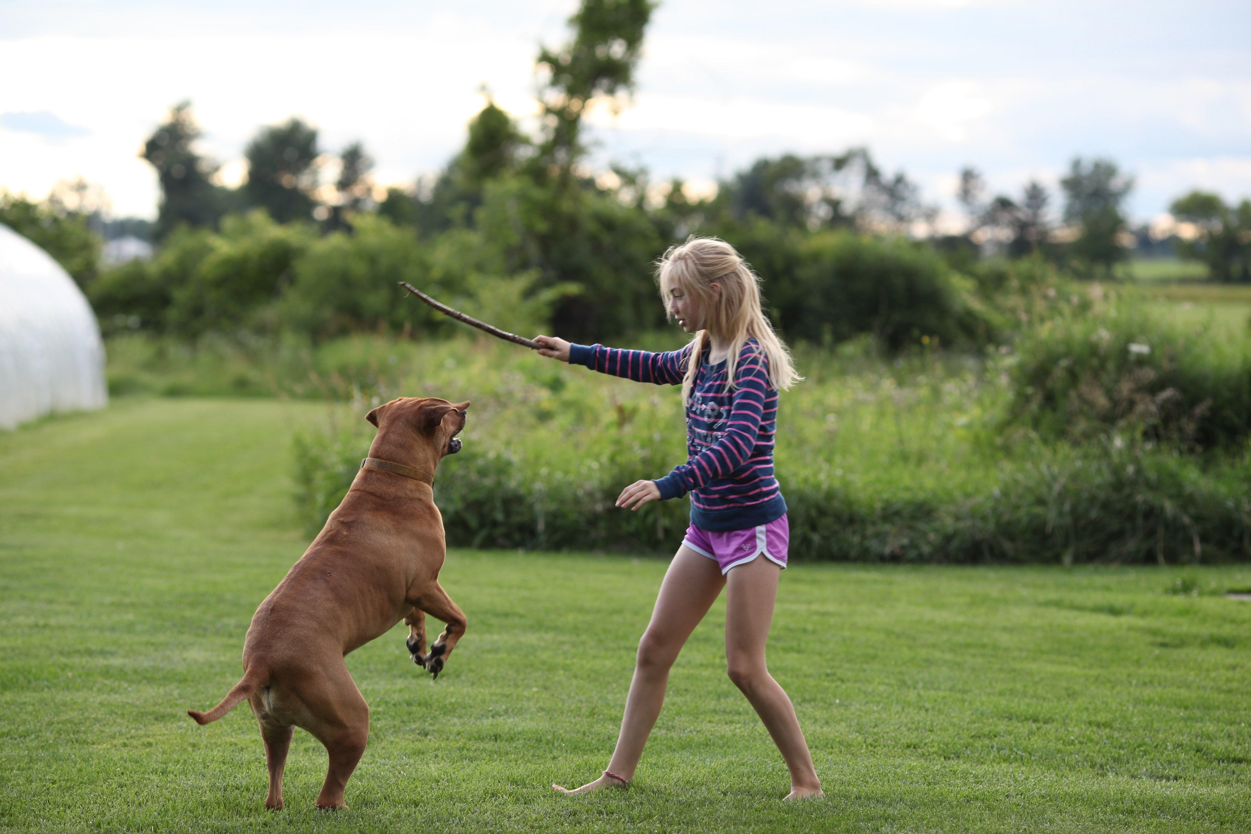 the magic flying dog #4